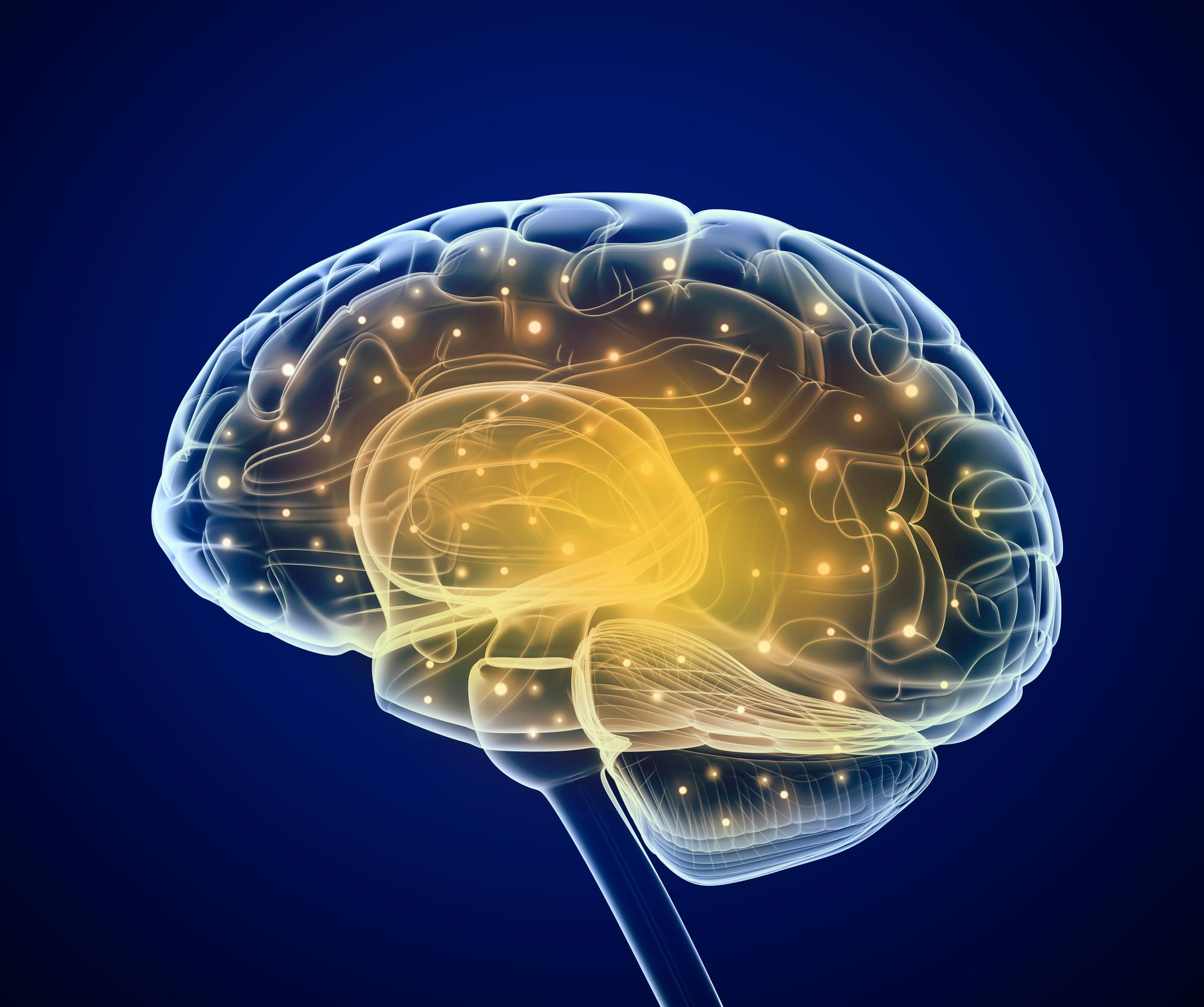 Regain Your Brain Health